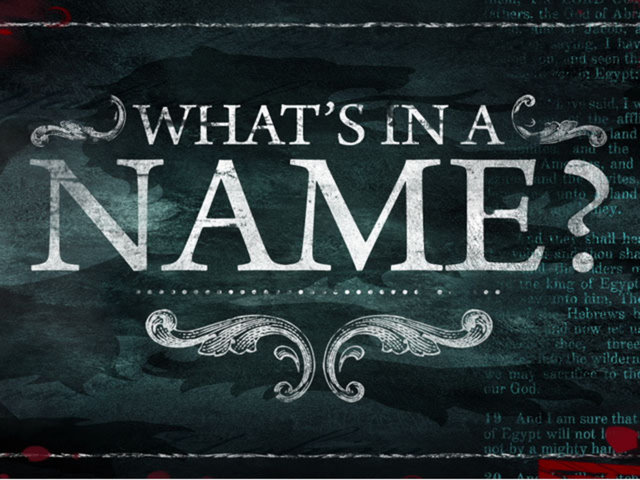 What's In a Name? Seeking Your Input