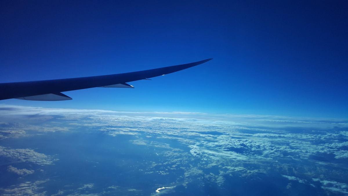 Airplane wing 787 from Matt Kiely