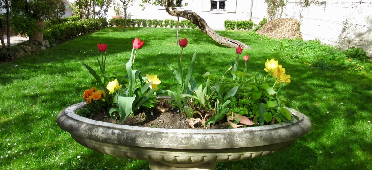 April in Paris: Museum of Montmartre and Renoir's Gardens