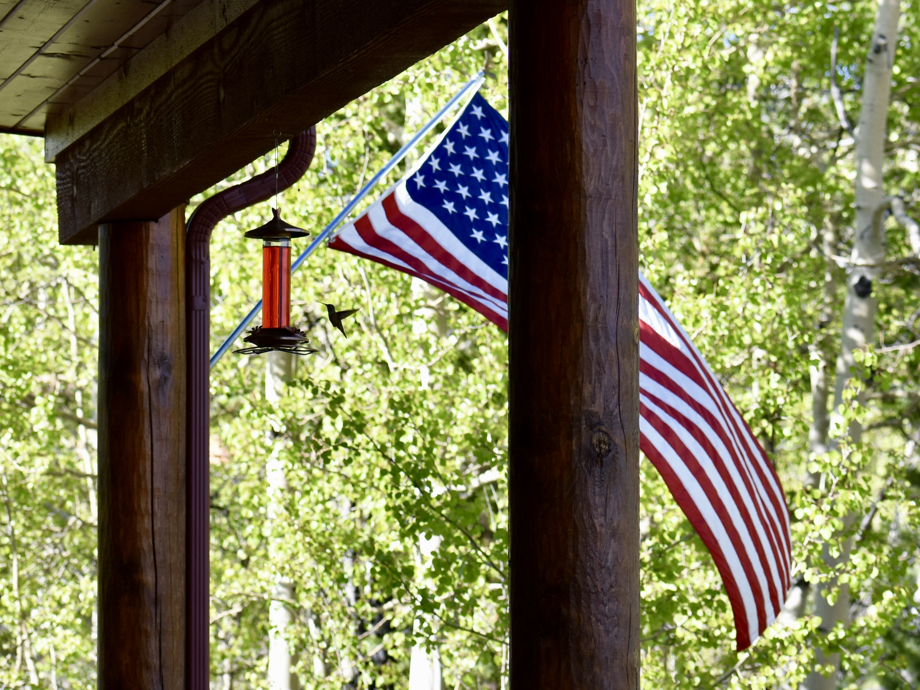 Memorial Day, Andy Rooney, the Thankful Foreigner, and Blowin' in the Wind