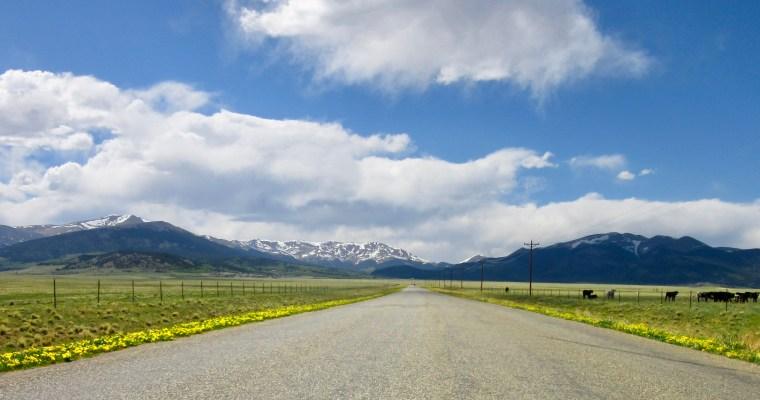 Haiku: The Road to…