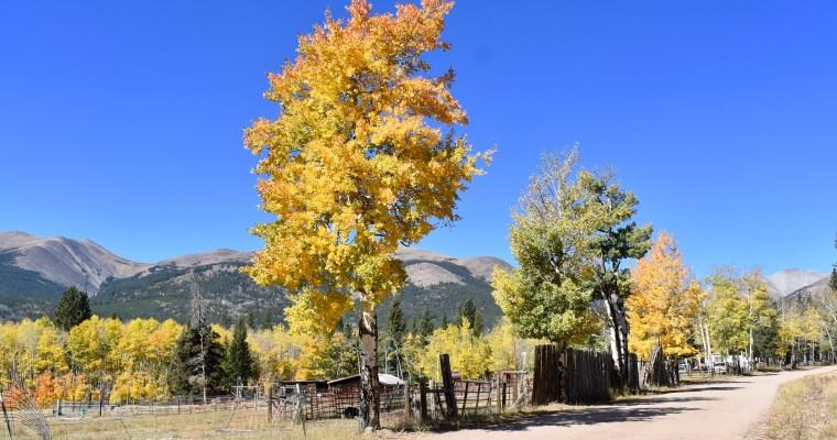 Autumn Haiku: My Eyes Were Happy