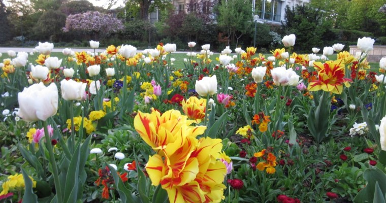 January Dreaming: April in Paris in the Gardens