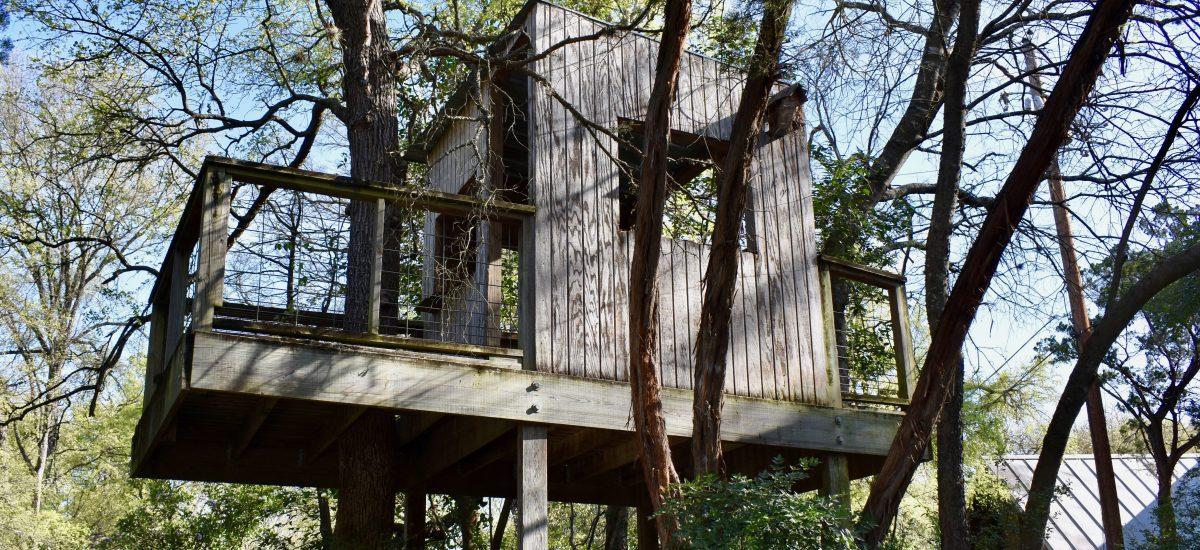 Treehouse Haiku