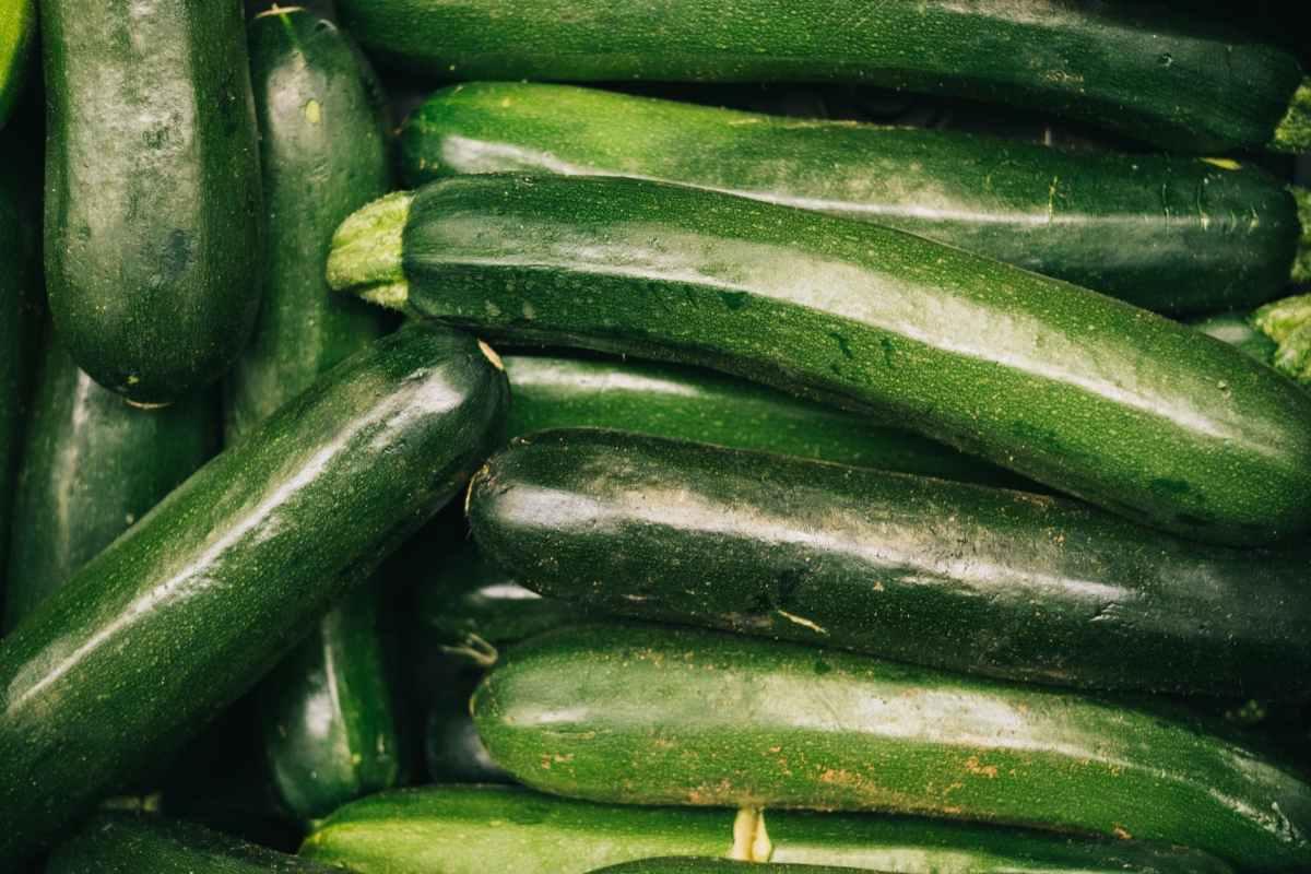 close up photo of zucchini