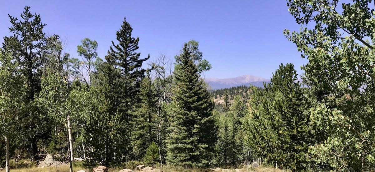 Take a Break for Nature Therapy, from a Colorado Photo Safari