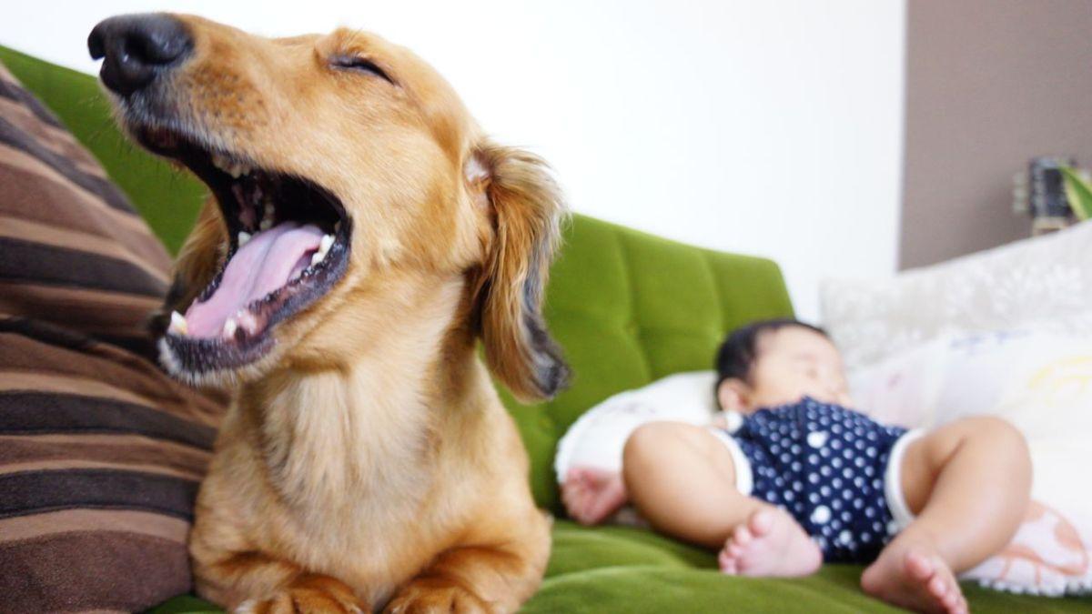 赤ちゃん学級と予防接種5回目に行ってきました。