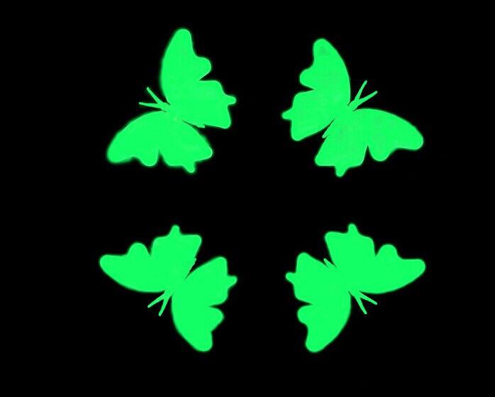 Vlinders met rupsen  Glow in the dark winkel