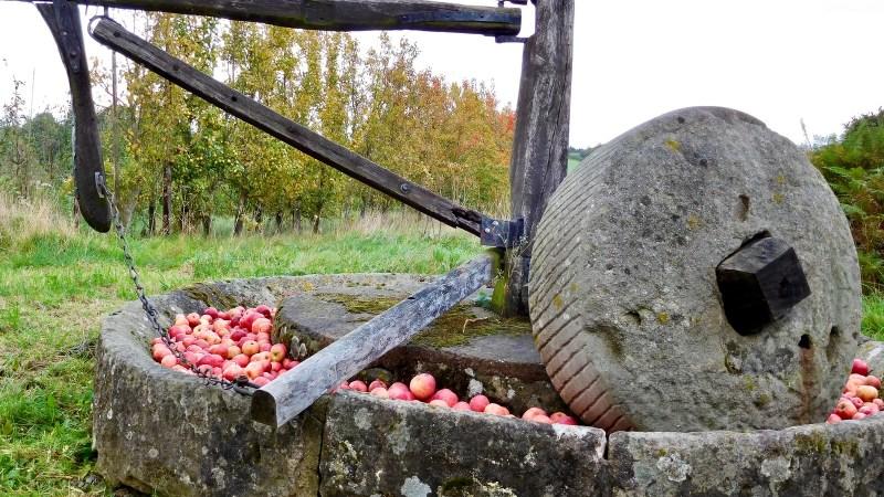 Cider mill at Throne Farm, Weobleym
