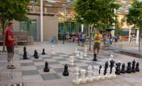 Chess In Portland