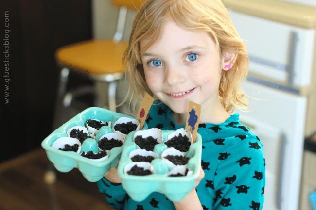 Eggshell seed starters are perfect for a kids garden!  Plant seeds inside of eggshells and when the weather warms up plant the entire thing into your garden! A fun lesson on composting and reusing everyday products for a new purpose.