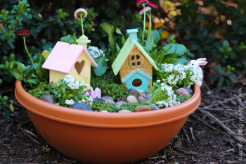 Pixie Hollow Fairy Garden