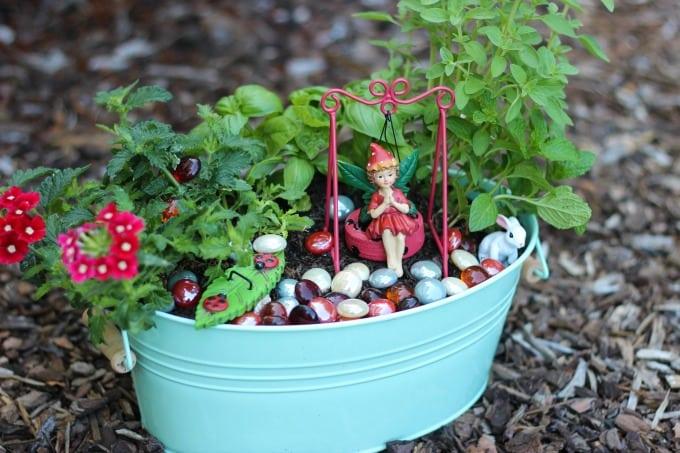herb fairy garden diy