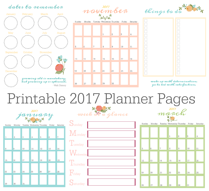 FREE Printable 2017 Planner Pages | Gluesticks