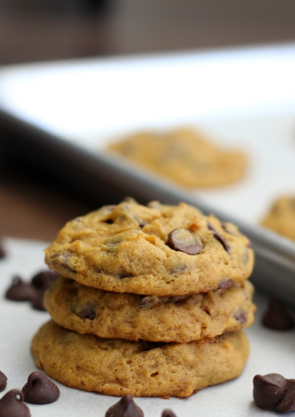 Delicious chocolate chip pumpkin cookies that are moist, chewy, cake-like, and full of pumpkin flavor!