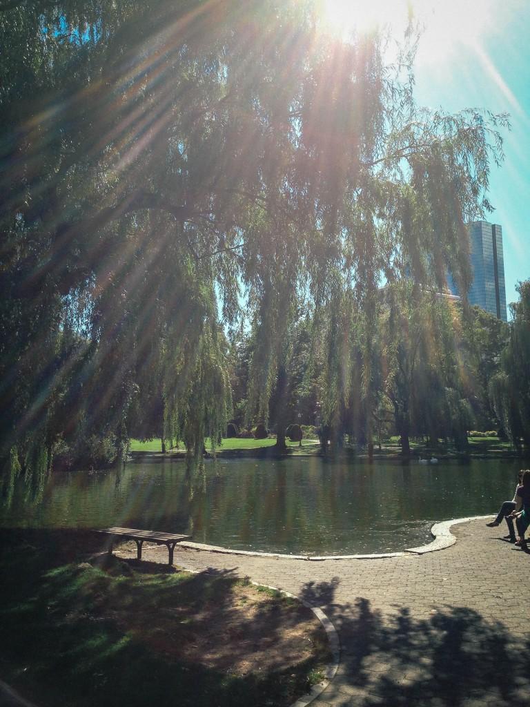 Boston- botanical gardens