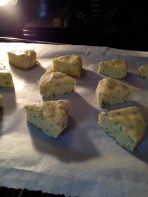 Into the oven - the warm scones were served and eaten before a record was made