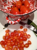 Tomatoes fresh from the garden