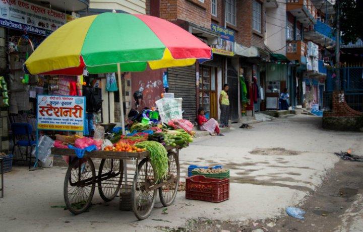 gemuesewagen_nepal