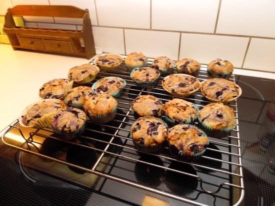 Glutenfrie blåbærmuffins