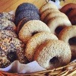 Gluten Free Bagel Portland New Cascadia