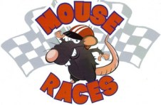 Mouse races4