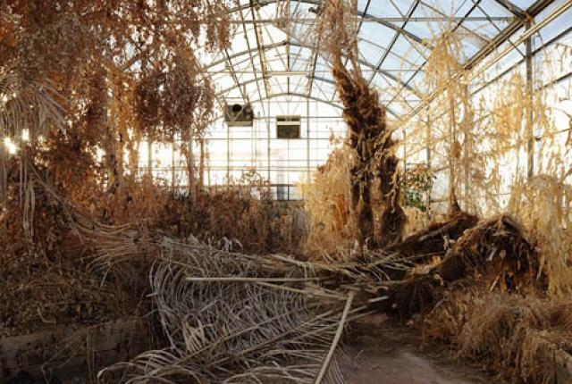 Biosphere 2 ran from 1991 to 1993. It was supposed to operate as a completely self-contained ecosystem. It didn't.