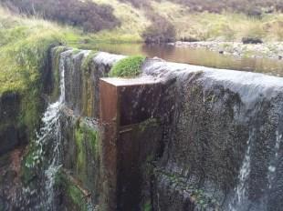 Water divert