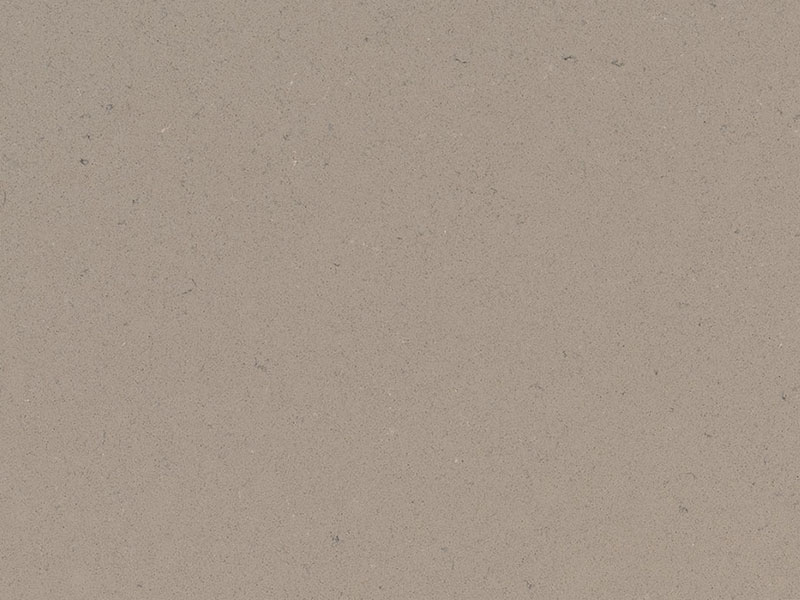 FOSSIL-TAUPE-1