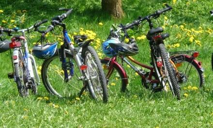 Rodzinny Spacer Rowerowy – Borówiec