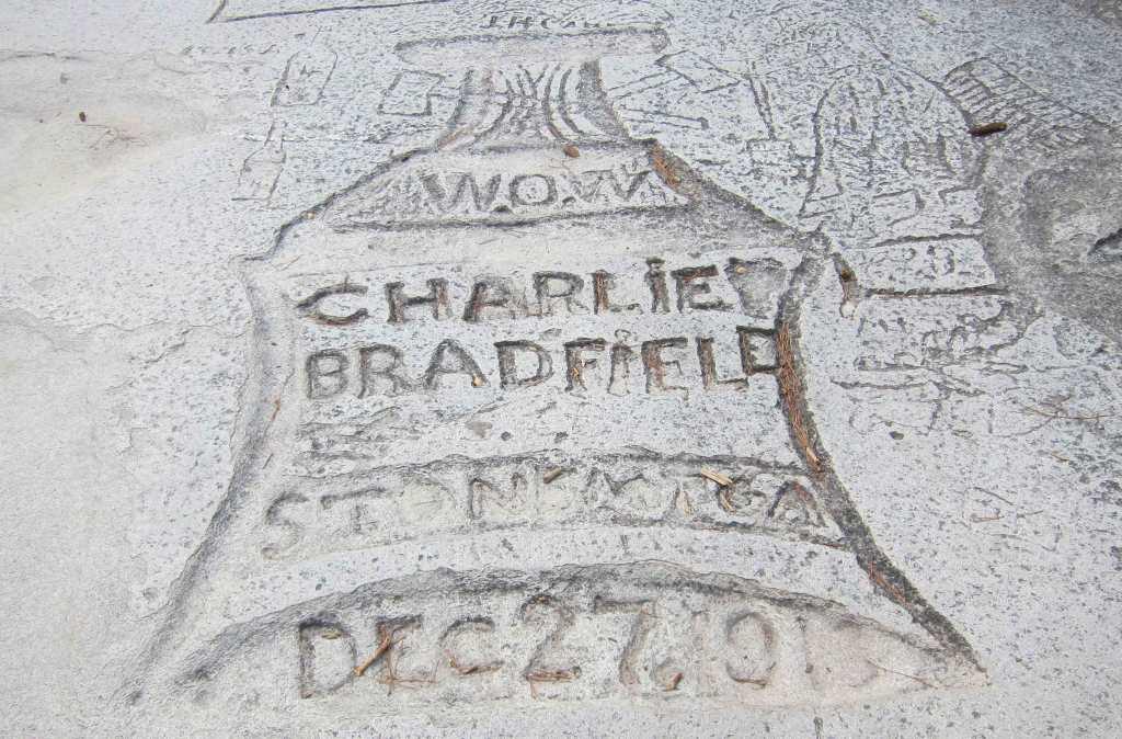 bradfield_08-20-11