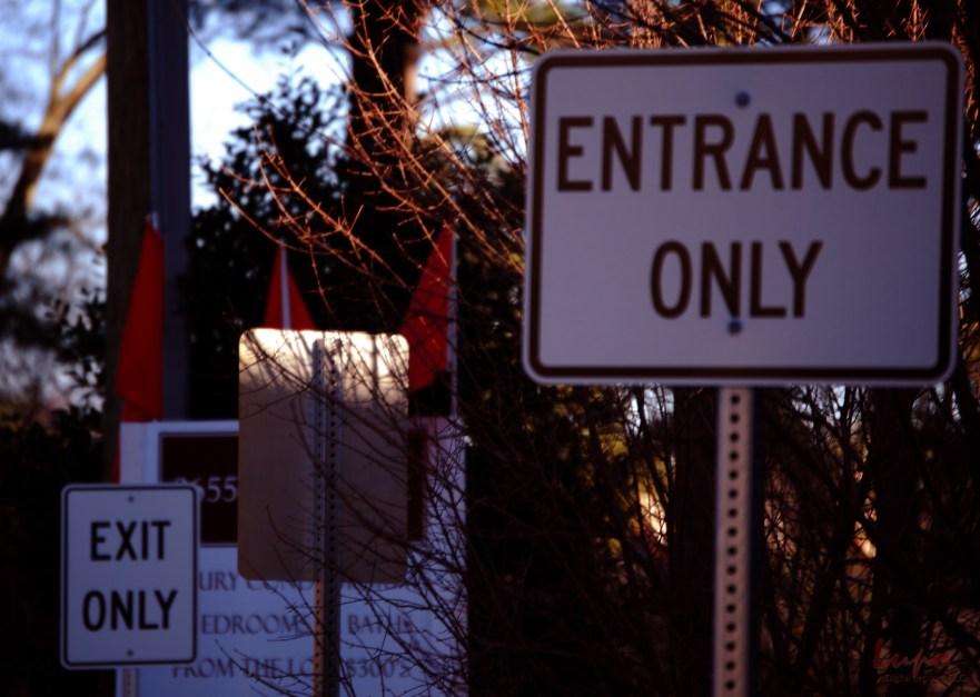 Exit Entrance, 24 January 2009