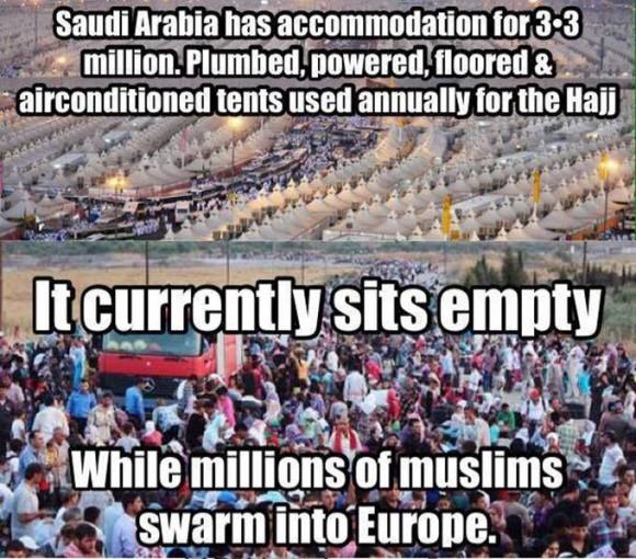 The Saudis