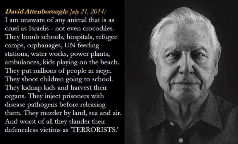 The great David Attenborough