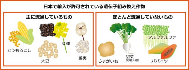 日本に輸入許可されているGM作物