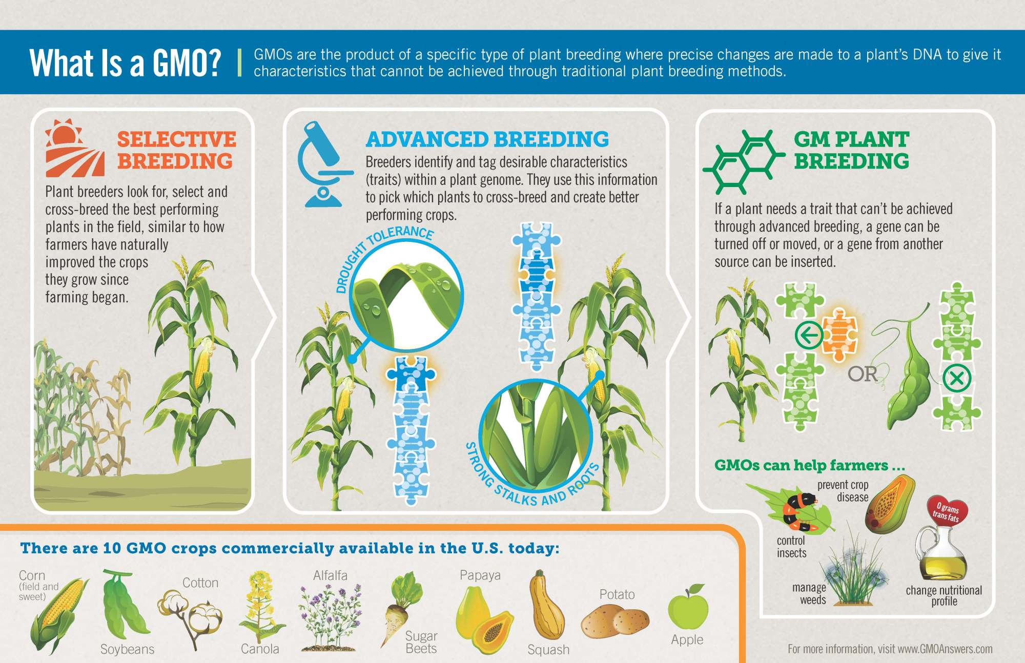 hight resolution of what is a gmo