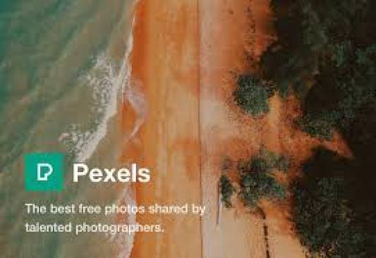 Pexels free images no copyright