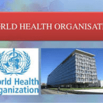 World Health Organization: Their Functions And Office Address In Nigeria