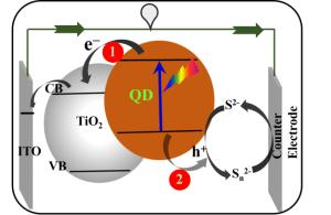 Schematic of typical QDSC