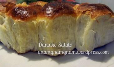 danubio-salato3-avanzo