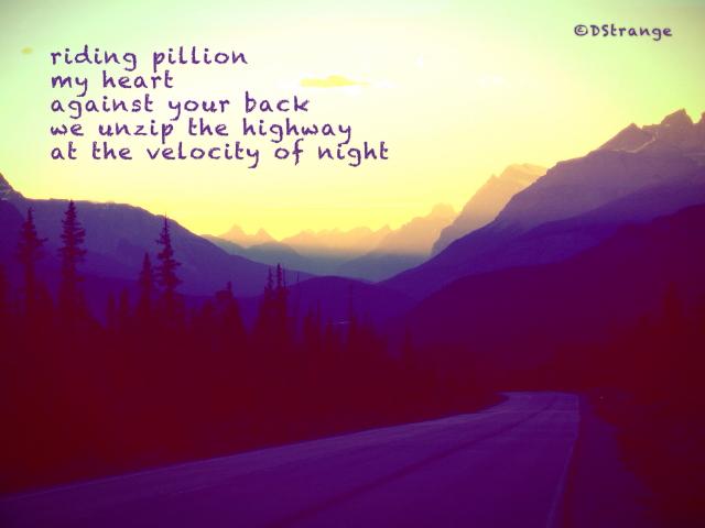 Riding Pillion_3