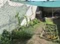 huerta de fernanda julio 10 2014 - 04 crop small
