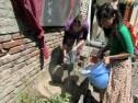 casona dada transicion taller huerta permacultura patio octubre 29 - small
