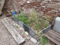 patio canteros dada febrero 2014 - 06