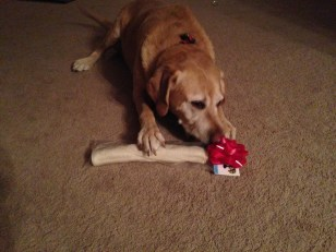 Mabel opens her Christmas gift from Shad and Gracie.