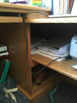 Find Emmett.