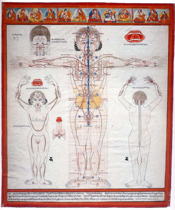 tibetan-anatomy008