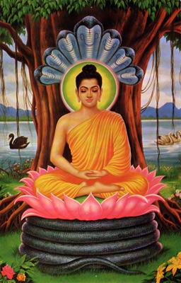 buddha-naga