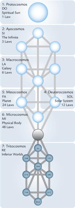 tree-cosmos-laws-sun-_fmt1