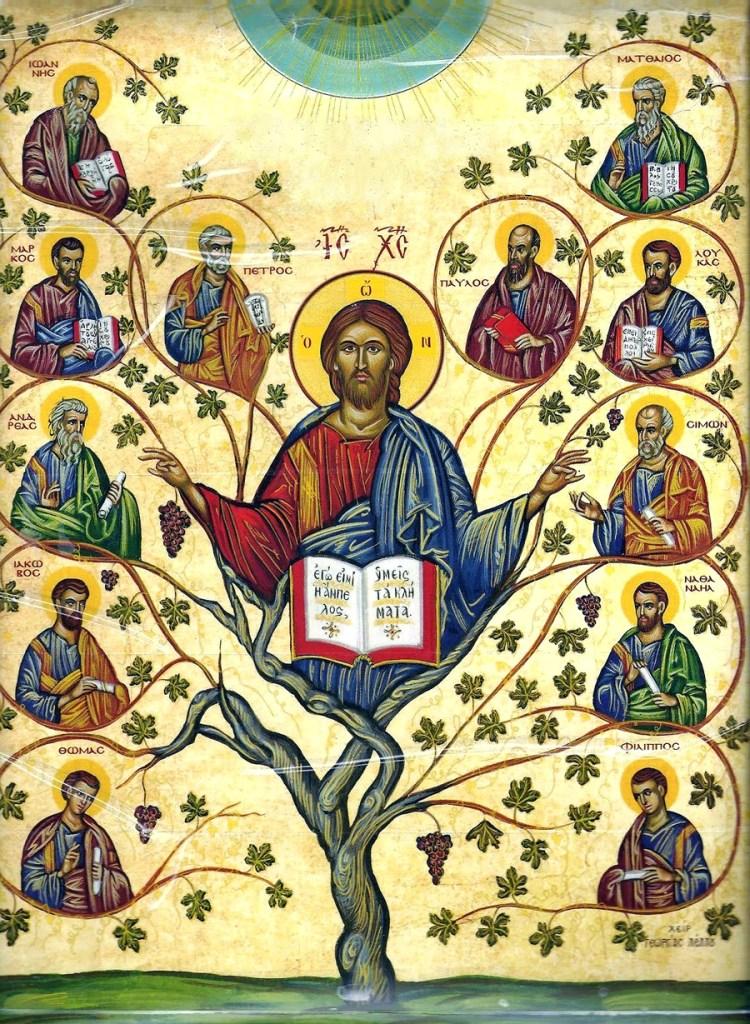 apostles_tree